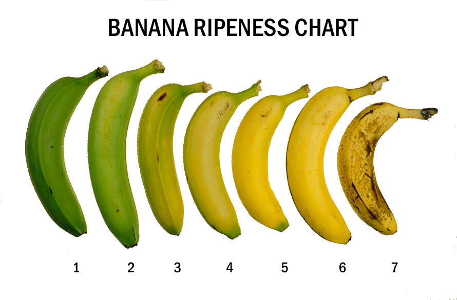 Progression of banana color